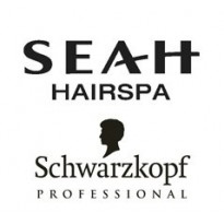 SEAH Schwarzkopf